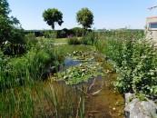 Der Seerosenteich ist der Blickfang der Naturminigolfanlage.