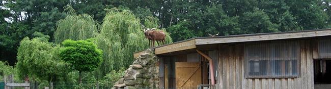 12-Arche-Haustierpark