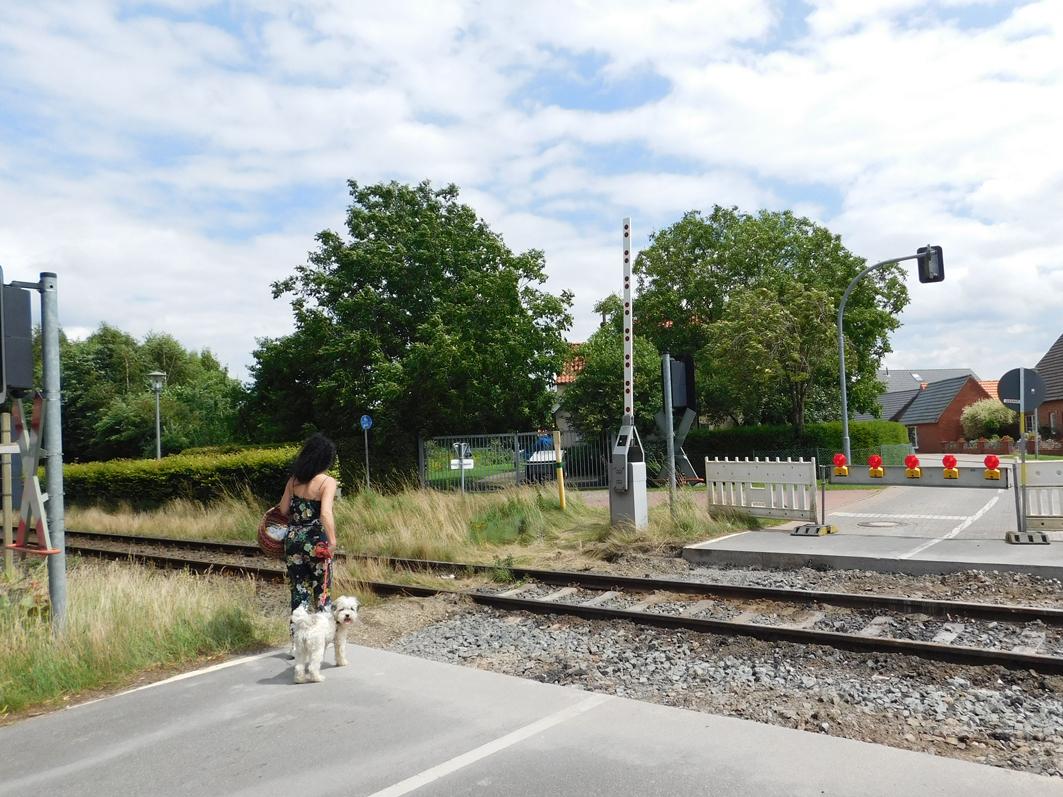 Sollen es Frauchen und Hund zu Fuß über die Gleise wagen? Nach anfänglicher Skepsis ging das Pärchen dann über die Gleise.