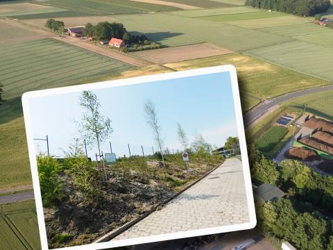 Bäume schirmen seit Kurzem den Recyclinghof in Ankum-Holsten optisch ab und sollen die Anlieger auch vor herüberwehenden Kompostier-Düften schützen.